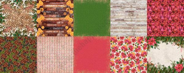 Double-sided scrapbooking paper set Botany winter 1
